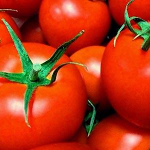 トマト酢の健康効果