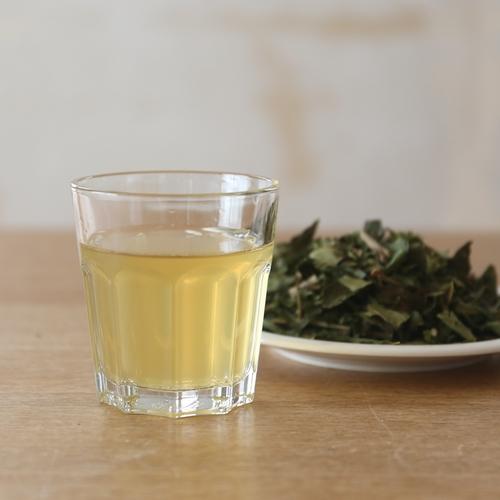 桑の葉茶の淹れ方