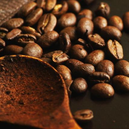 コーヒー生豆の保存