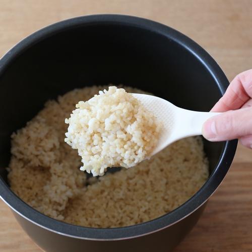 美味しい玄米ご飯の炊き方