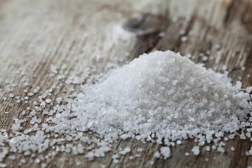 塩の役割をお話いただきました