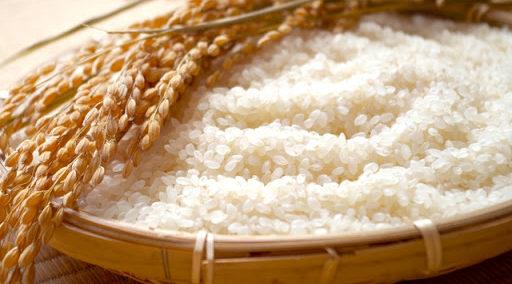 米と酵母の違いから日本酒の味・風味を予想する
