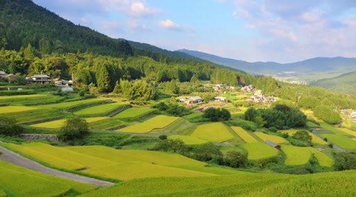 日本酒・地域による違いはこう楽しむ