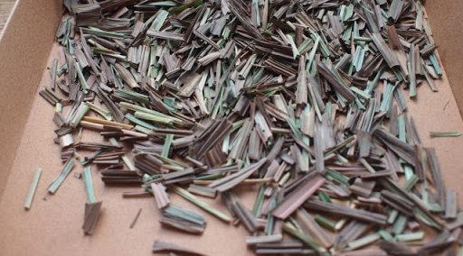 生葉・乾燥葉の使い方