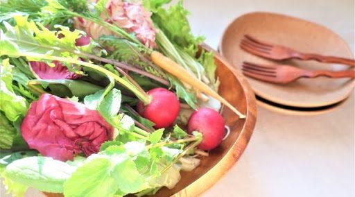 菌 増やす 痩せ 食べ物 を