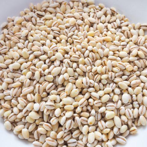 もち麦ご飯の効果効能|おいしい炊き方や糖質・カロリーもご紹介