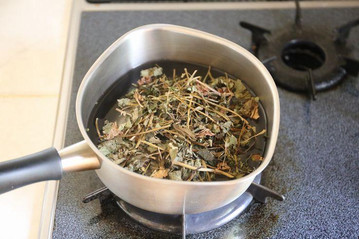 茶 ドクダミ